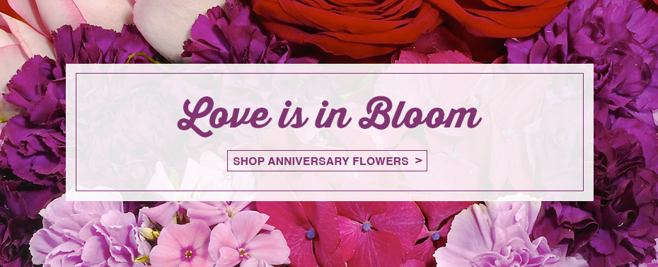 Love Is In Bloom Shop Anniversary Flowers