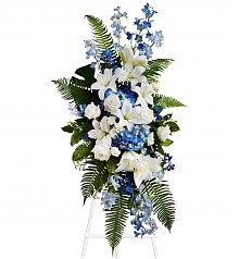 Funeral Flowers: Ocean Breeze Spray